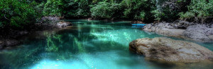 jungle journey in Costa Rica