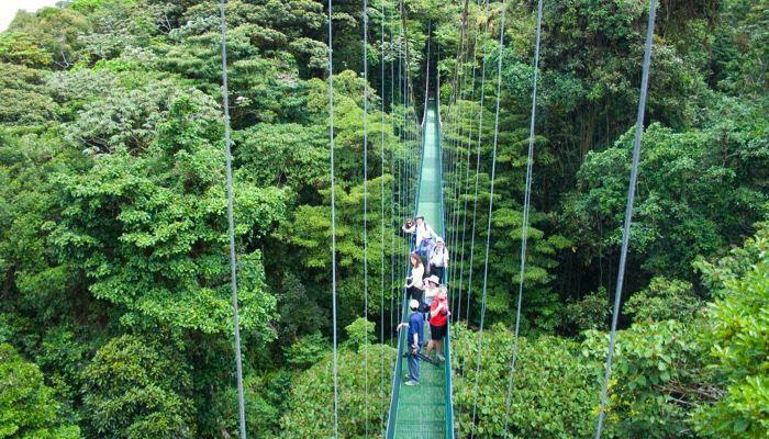 monteverde-skywalk