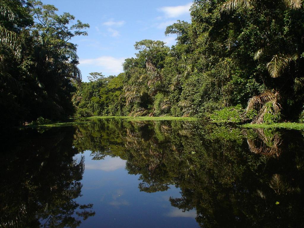 tortuguero-costa-rica1