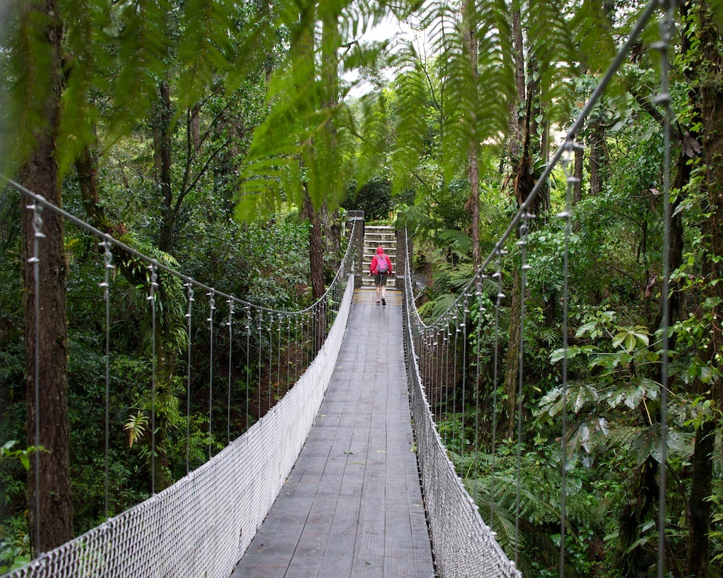 Arenal-Hanging-Bridges-Tour-Operators-Costa-Rica-02