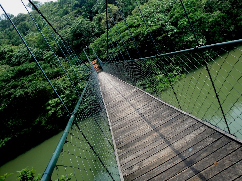 Arenal-Hanging-Bridges-Tour-Operators-Costa-Rica-04