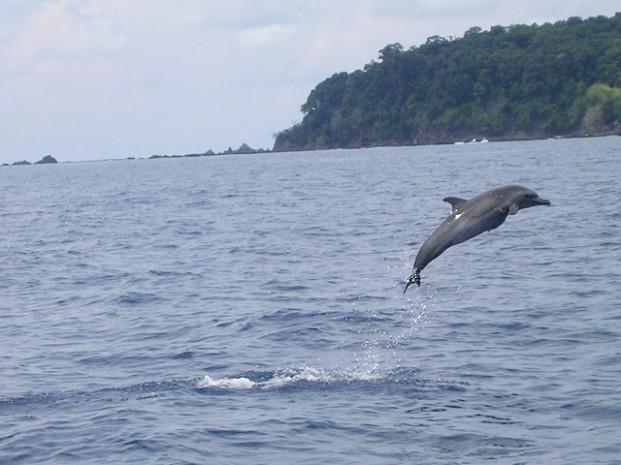 Catamaran-Manuel-Antonio-Tour-Operators-Costa-Rica-03