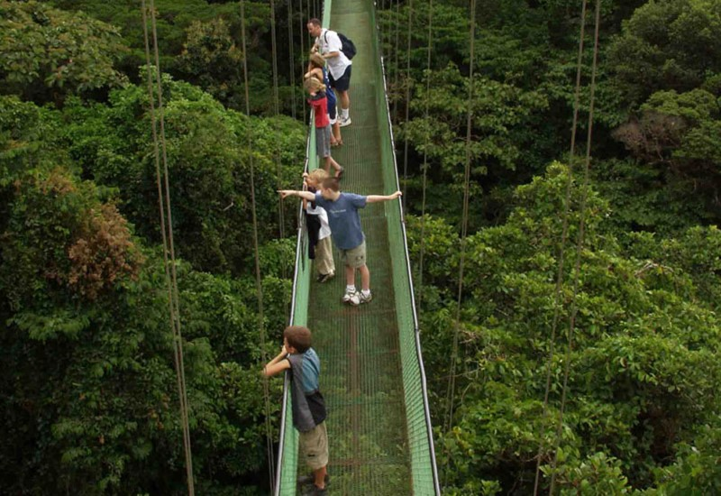 Monteverde-Cloud-Forest-Tour-Tour-Operators-Costa-Rica-02