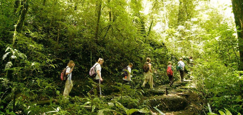 Monteverde-Cloud-Forest-Tour-Tour-Operators-Costa-Rica-03