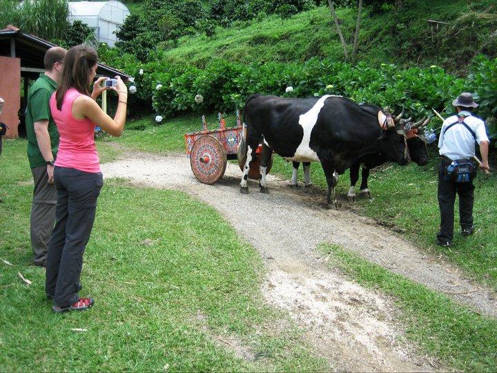 Trapiche-Tour-Monteverde-Tour-Operators-Costa-Rica-02