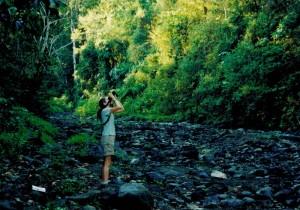 Carara National Park - Costa Rica