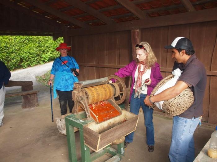 Don-Juan-Coffee-tour-Costa-Rica-2
