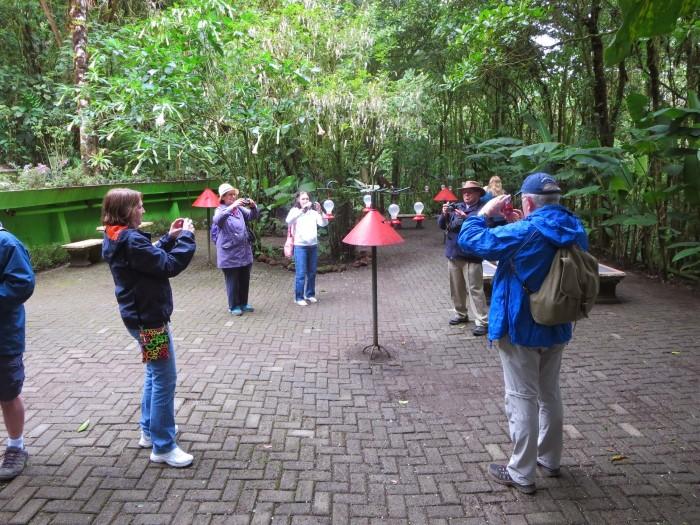 Hummingbird-Garden-Monteverde-Costa-Rica-05
