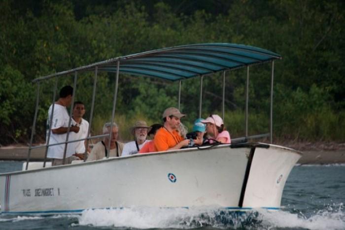 Mangrove-tours-Costa-Rica-4