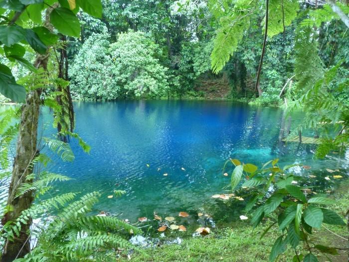 Rio Celeste Tour - Costa Rica