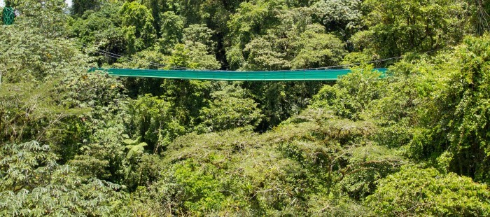 Sky-tram-and-walk-Costa-Rica-8