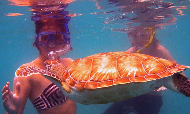 Beach-Tour-and-Snorkeling-in-Tamarindo-Costa-Rica-5