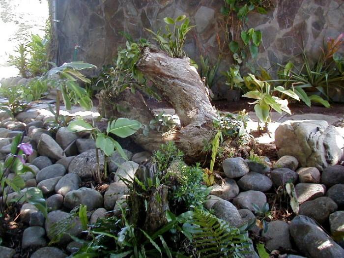 Hotel-Arcoiris-lodge-Costa-Rica-07