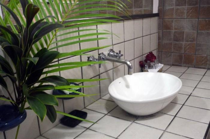 Hotel-Cariblue-Costa-Rica-6