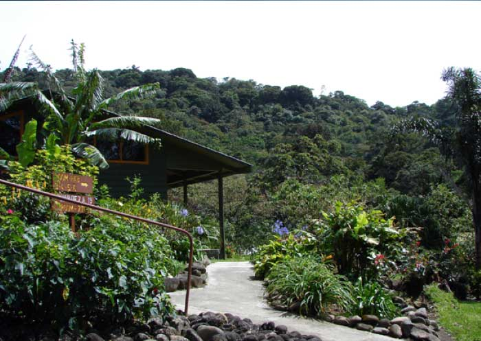 Hotel-Monteverde-Cloud-Forest-Lodge-Costa-Rica-6