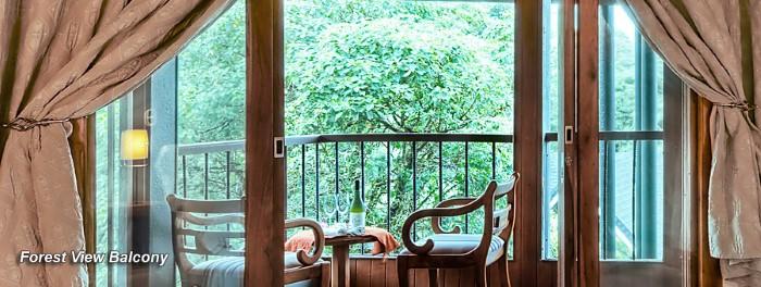 Hotel-Monteverde-Lodge-Garden-Costa-Rica-7