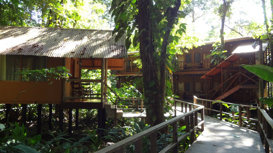 Hotel-Rana-Roja-Lodge-Costa-Rica-2