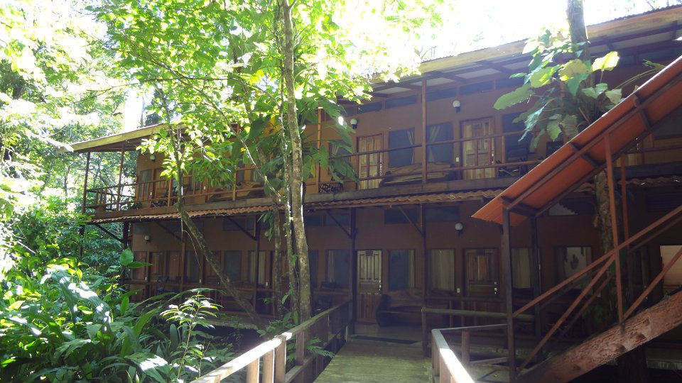 Hotel-Rana-Roja-Lodge-Costa-Rica-5