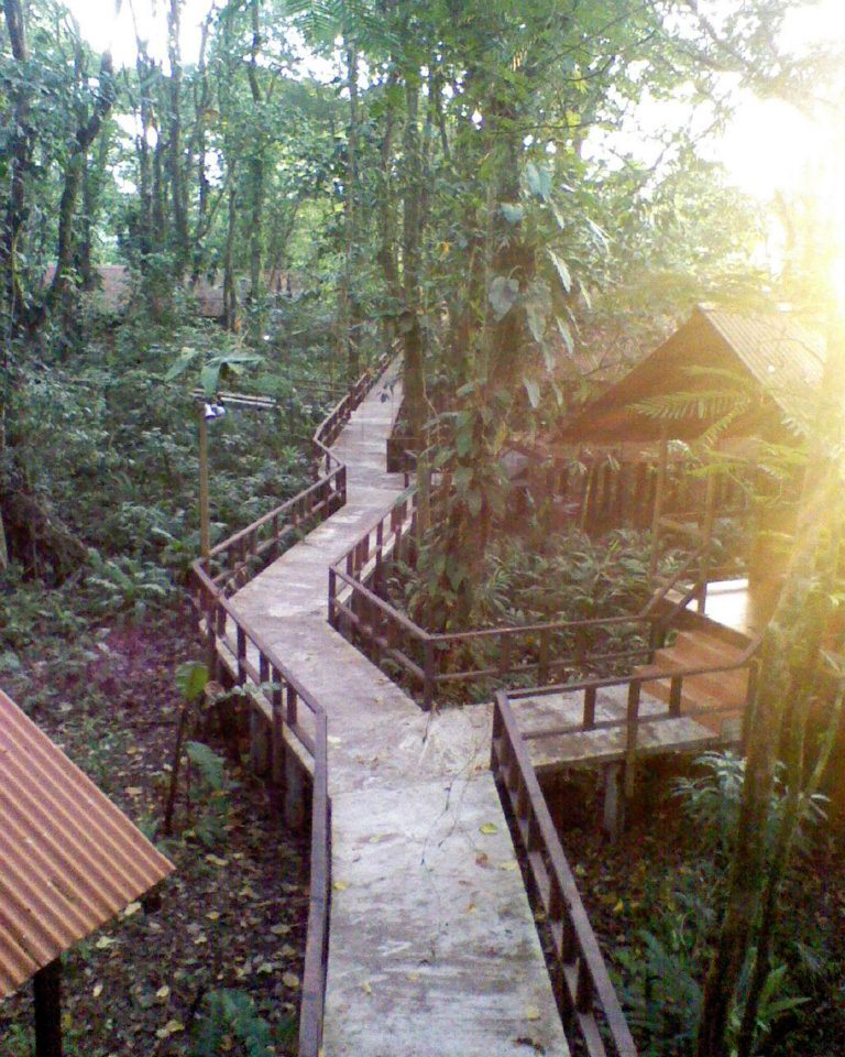 Hotel-Rana-Roja-Lodge-Costa-Rica-6