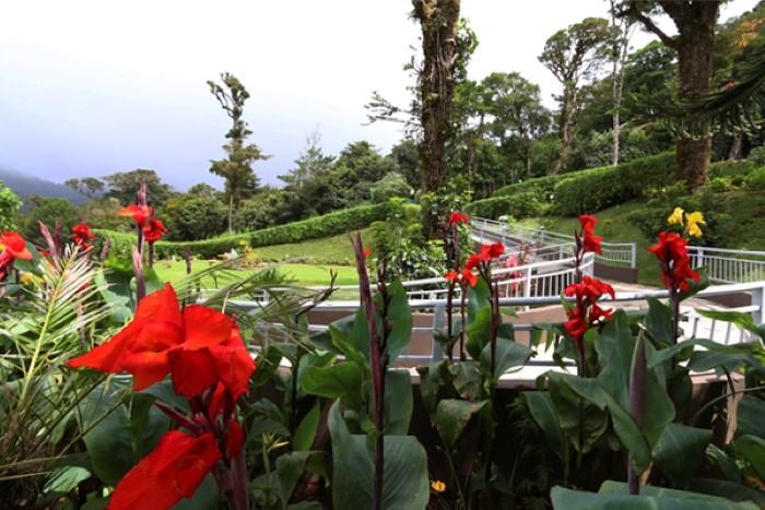 Trapp-Family-Hotel-Costa-Rica-5