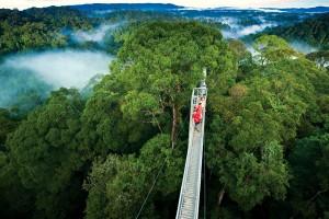 activities in Monteverde
