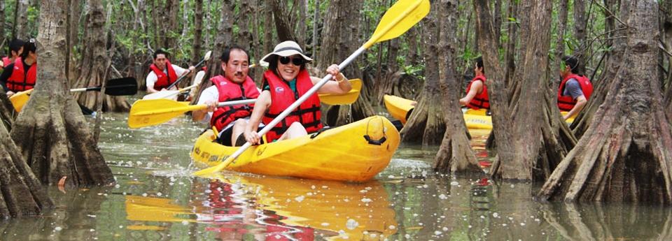 mangrove-tour-in-manuel-antonio