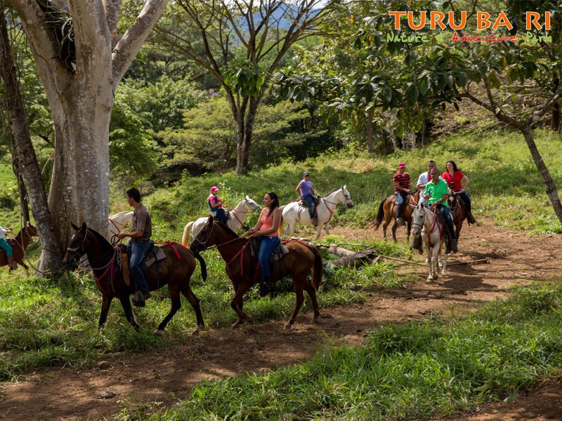 horseback-turubari
