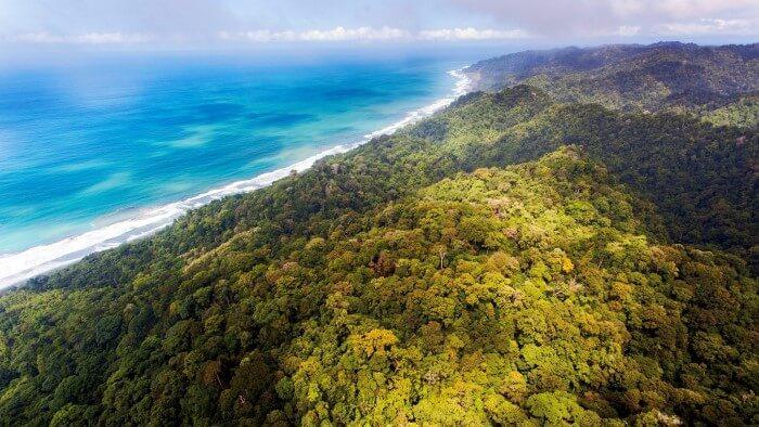 Corcovado National Park - Photograph by Emmanuel Rondeau