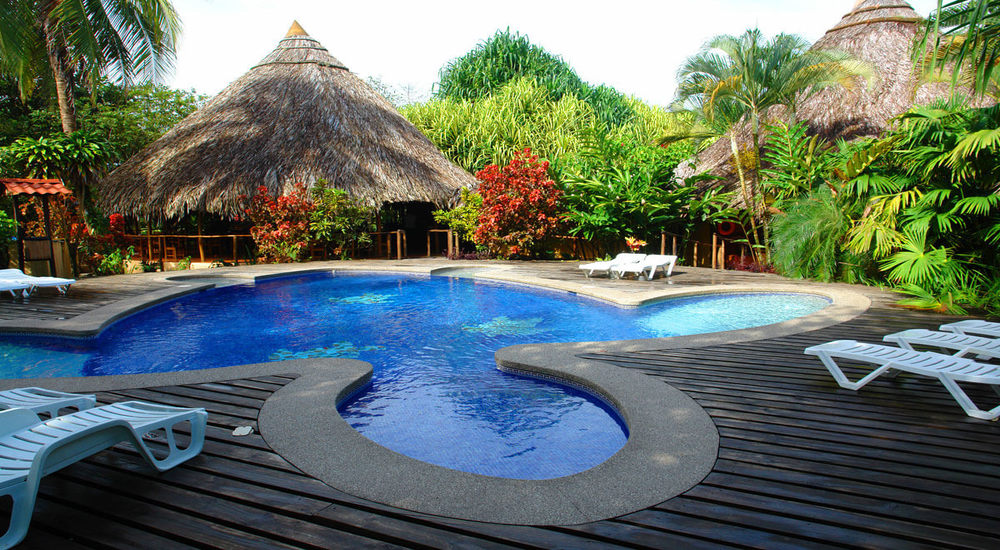 Hotels in Tortuguero