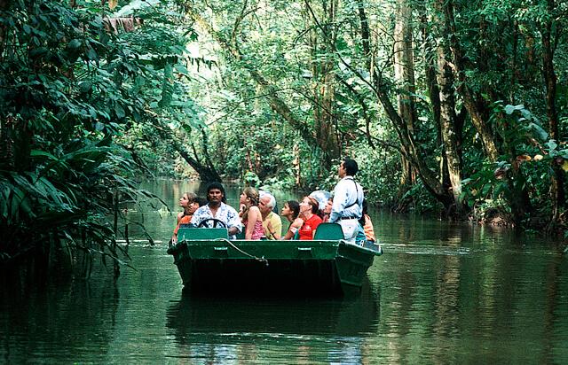 Tortuguero Canals Boat Tour
